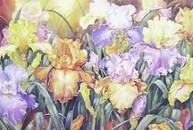 Jeanette Blackburn NZ artist
