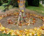 VÝTVARKA - PODZIM / výtvarná výchova 2. stupeň, podzim, list, lupen, strom, autumn, elementary art, září, říjen, listopad, carving, ovoce, zelenina, Romana Bachelová