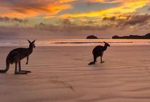 Amazing Australia... / An incredible, magical country.