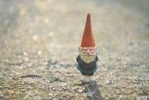 Glorious Gnomes...