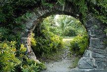 ablak a titkos kertre - windows to the secret garden