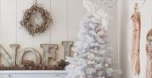 Winter Holiday Decor / Ideas for decorating the home and projects for the Winter Holiday Season