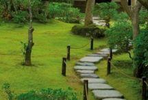 Zen/japanilainen puutarha