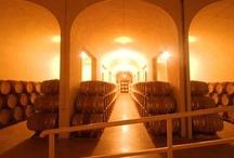 Bodegas Ruta del Vino Ribera del Guadiana / Bodegas que abren sus puertas e invitan a conocer sus vinos y su historia #enoturismo #turismo #RVRibGuadiana #Extremadura