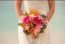 Wedding photography by Yelena Rogers / Destination Wedding Photography on Beautiful Island of St John Virgin Islands http://www.yelenarogersphoto.com 340-774-4027