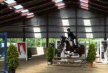 Actiefoto's paardrijden / Ik heb van mijn dochter verschillende actiefoto's gemaakt terwijl zij meedoet aan de springcompetitie en van een crossles.