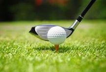 Le sport en vitrine / Tout pour le vélo, la course, le golf, le tennis...