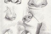 ✏ Study: Nose