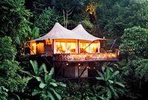 Dream Rainforest Travel Destinations
