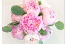 Eternal Love Flower Gallery / Visit us at http://eternallove.ca/en/