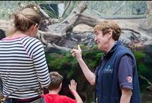 Shedd Aquarium Volunteers / Join the Shedd family! Become a volunteer. If you're passionate about aquatic life, and you love to learn, teach and inspire, you'll be a great volunteer! We are currently seeking Guest Engagement and School Group Experience volunteers. Trainings begin in September