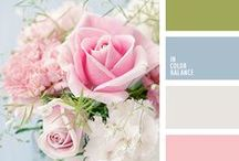 Color Pallets / by Deborah Sparks