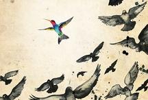 Birdtopia / Ba-ba-ba-ba-bird bird bird. Bird is the word.