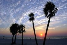 Sunsets in St. Pete/Clearwater / We have some amazing sunsets on the Gulf of Mexico and we think you'll enjoy these. visitstpeteclearwater.com / by Visit St. Pete/Clearwater