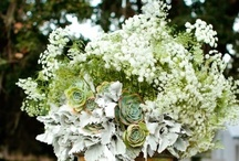 Bethany's Earthy Spring Wedding / by Lauren Weems