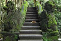 Bali / by Monica Smal