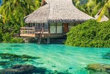 Maldives / by Monica Smal