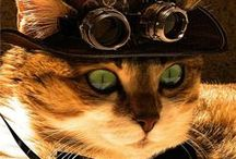 Steampunk / by Patti Fisher