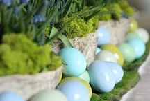 Easyster / Bunnies, Eggs, Baskets, and Spring