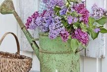 Spring Will Get Here . . . / Spring-spiration