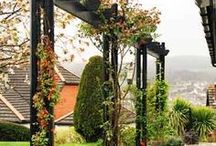 Pergolas and Porches / Cover spaces with style and flair.