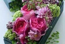 Flower Arranging / Flowers, Together