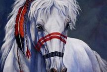 Horses / by Joan Witter