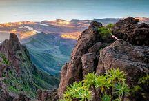 Tenerife ✔️