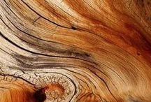 Wood - Holz - Dřevo / Krása dřeva - Beauty of wood  -   Práce se dřevem - Woodwork