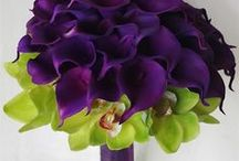 Wedding Flowers / Flowers that might be nice for the wedding / by Becky Engle