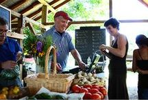 Ambler Farm - In the Kitchen / Local, seasonal produce for sale June - October