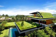 Edificios Ecosostenibles / En Remica apostamos por los edificios verdes ecosostenibles.