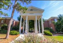 UNCW Campus / Photos from our beautiful, coastal campus. / by UNCW Office of Admissions