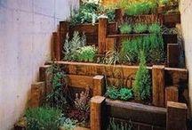 Huertos Urbanos / Ideas y proyectos sobre huertos urbanos y  jardines verticales. Apostando por una ciudad sostenible.