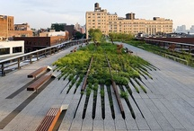 Greening the city | Public spaces