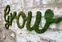 green fingers / Ideas for outside your home