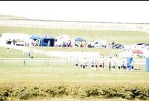 Barbury Horseless Steeplechase 03/08/2014 / ABD were proud to support and sponsor this event which was in aid of Greatwood Children's Charity & Wiltshire Air Ambulance.  The event this year raised £3,000.