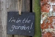 In the Garden / All things inspirational for every gardener!