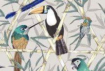 Bird Illustrations & Patterns / A menagerie of bird design, illustrations, prints and patterns; all about birds!