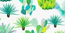 Cacti Prints and Patterns / Collecting all forms of imagery illustrating Cacti and Succulents, because I'm Cactus Obsessed!
