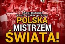 Grafiki s-w-o.pl