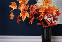 Ideas for Fall / The leaves are turning, and so should your decor! Enhance your home with beautiful Fall decor ideas, indoors and out. From rustic harvest decor to rich jewel tones, Fall decor has us feeling warm and cozy.