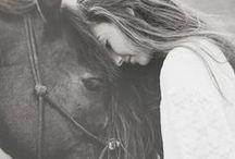 Horses,donkeys...