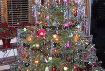 Christmas / by Adonia Hodgkins