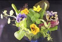 Edible Flower Salads / Flower salads from Maddocks Farm Organics & others that inspire us. www.maddocksfarmorganics.co.uk