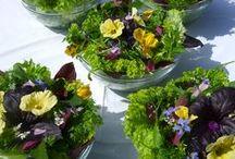 Organic wedding / Ideas for your perfect organic wedding.