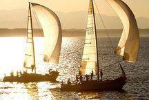 Navigando...! / by Loretta Gioria