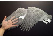 Birds - Eagles, Hawks
