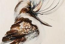Birds - Kookaburras, Kingfishers