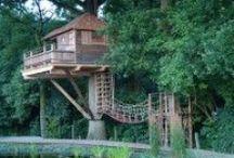 Home :: TreeHouse
